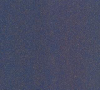 Volans Bleu